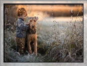 Trawy, Trzciny, Airedale terrier, Pies, Chłopiec